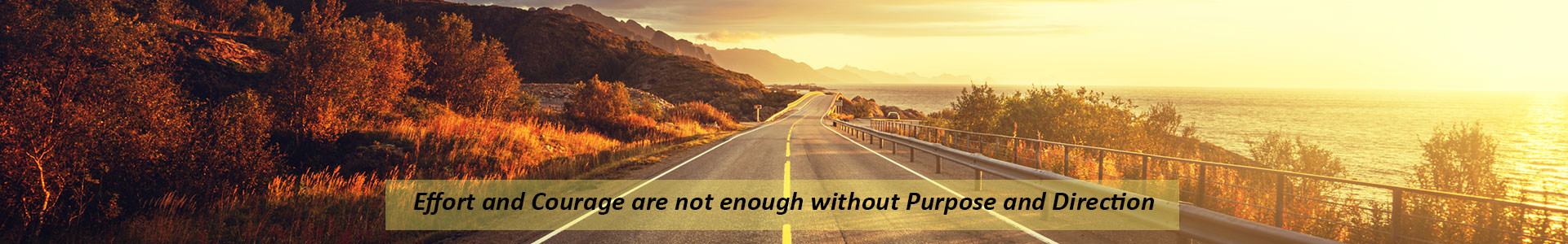 Road next to lake at sunset with quote Effort and Courage are not enough without Purpose and Direction